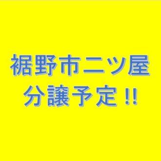 裾野市二ツ屋分譲予定!!